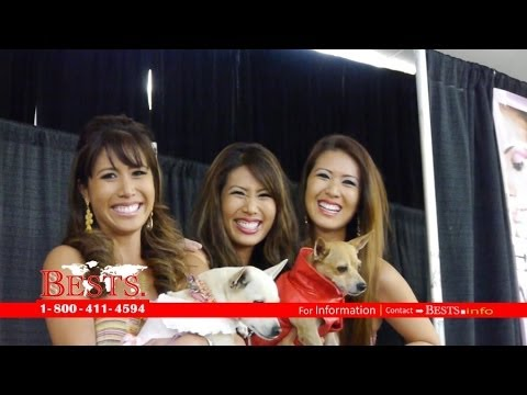 11th Annual Hawaii Woman Expo 2013 | Dog Show @ Blaisdell Center, Honolulu, HI