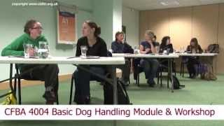 Cidbt,cambridge Institute Of Dog Training And Behaviour, Canine Behaviour Courses.