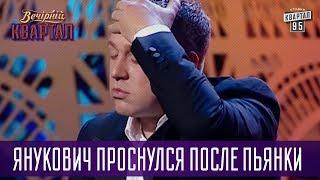 Что ж я Ринату скажу? - Янукович проснулся после пьянки   Вечерний Квартал
