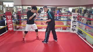 권투는 거리 싸움이다!!!