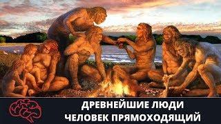 Древнейшие люди   Человек прямоходящий