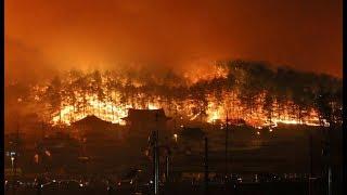 Очень мощный лесной пожар на Канарских островах: идет эвакуация людей
