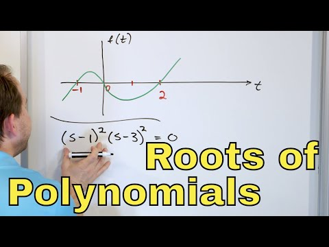 17 - Solve Polynomial Equations & Roots Of A Polynomial, Part 1