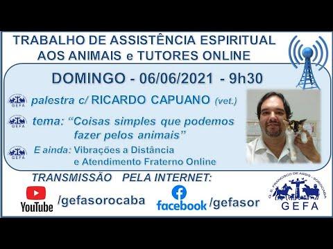 Assista: Trabalho de Assistência Espiritual aos Animais ONLINE - c/ RICARDO CAPUANO (06/06/2021)