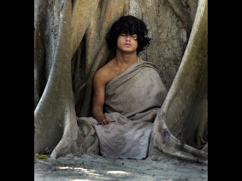 15 year old Yogi. No eat, no drink, no sleep... Only Meditat
