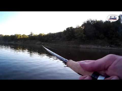 ловля судака на дону в воронеже видео