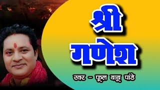 ful babu panday with vs music(patna,bihar)