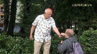 Muzułmanie w Europie - Janusz Korwin-Mikke ▶Wakacje z Korwinem 2018◀