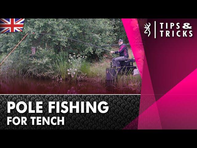 Pole Fishing for Tench : Tench Fishing (2021)