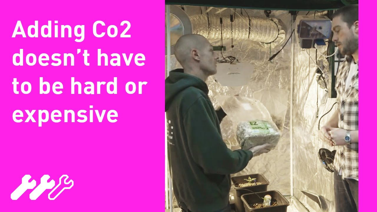 Co2 Production - Carbon dioxide in the Hydroponic Growroom #35 - YouTube  sc 1 st  YouTube : adding co2 to grow tent - memphite.com