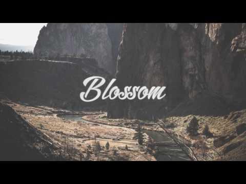 Alessia Cara - Here (Nathan Asher Remix)
