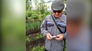 Жителю Барабинска грозит штраф за посадку лука на месте свалки
