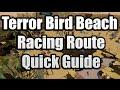 Runescape Beach Event Terror bird Race quick guide