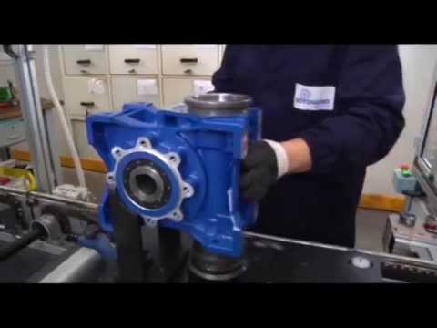 Quality of Assembly - Motovario