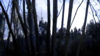 ¨ El sueño de una noche de... San Juan¨ 2ª parte (original y adaptación de Mabel Rodríguez)