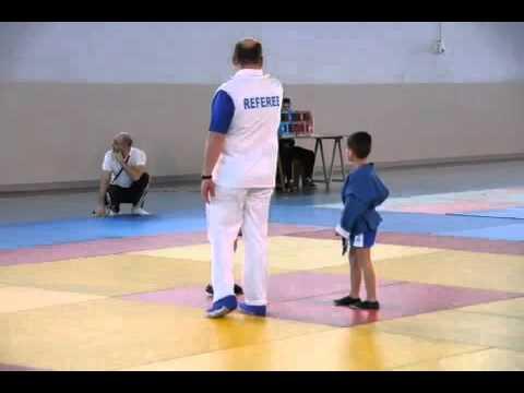 Championnat d'île de France de Sambo sportif