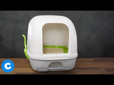 Tidy Cats Breeze | Chewy