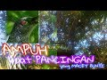 Pancingan Cucak Keling Ck Perling  Mp3 - Mp4 Download