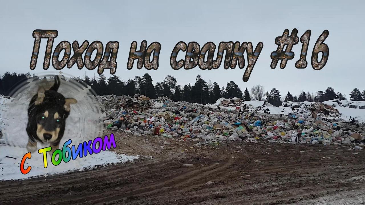 Находки в мусоре металлоискатель в рассрочку в москве