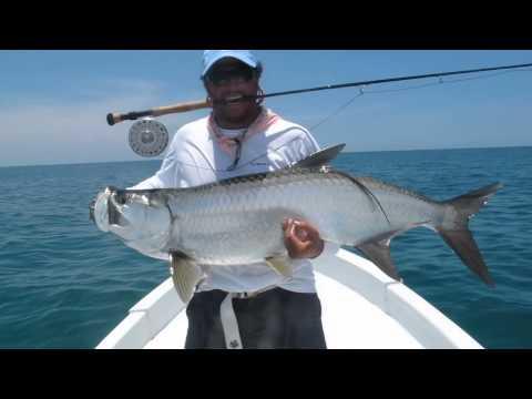 Fly fishing for big tarpon.
