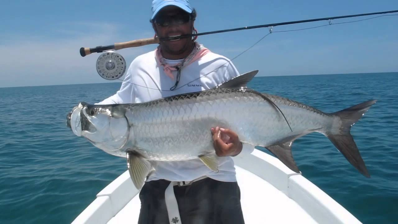 Fly fishing for big tarpon youtube for Fly fishing for tarpon