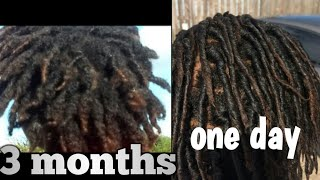 Every thing that happened to my dreads withen the first 3 months