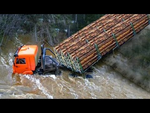 Extreme Dangerous Logging Truck Operator Skill, Powerful Wood Tractor Heavy Equipment Working