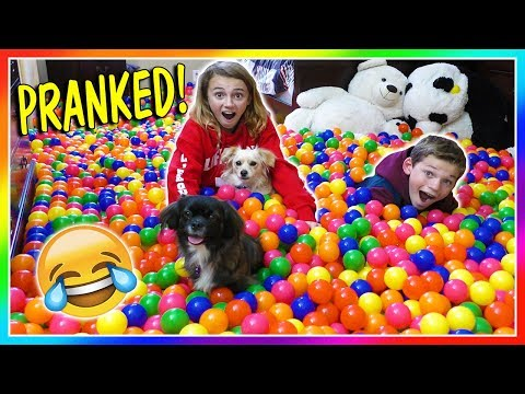 TURNING TYLER'S ROOM INTO A BALL PIT | We Are The Davises