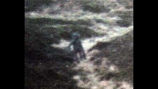 Aliens & UFOs:  The 1987 Ilkley Moor Alien