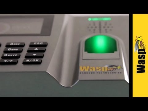 Employee Time Tracking with Biometric Identification Time Clock | WaspTime - B2000