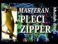 Masteran Pleci Nembak Zipper  Terbaru Mudah Ditiru Pleci Ombyokan  Mp3 - Mp4 Download