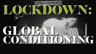 Lockdown: Global Conditioning