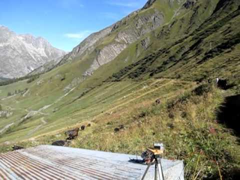 Field work in Switzerland