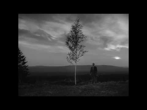 Max von Sydow Readies for Revenge in