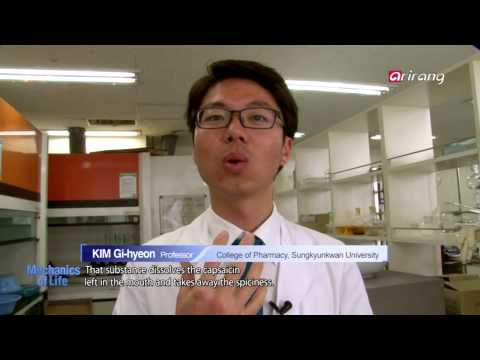 Mechanics of Life-Spicy food maniac visiting a brainwave research lab   매운음식매니아