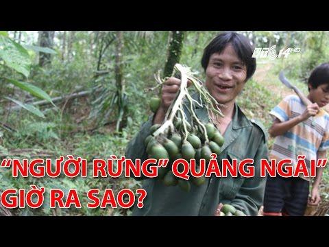 """(VTC14)_Sau 3 năm về làng, """"Người rừng"""" Quảng Ngãi giờ ra sao?"""