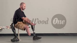 WillowWood One System for Transtibial Amputees
