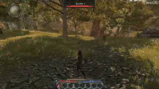 Divinity 2 Ego Draconis HD gameplay