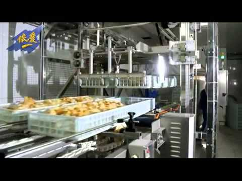 hatchery automation broiler - YouTube