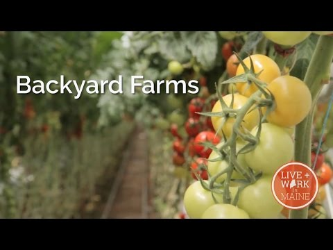 Maine Business - Backyard Farms - S2 - Episode 6