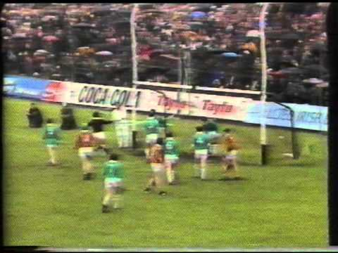 All Ireland Hurling Final 1973 (1 of 8)