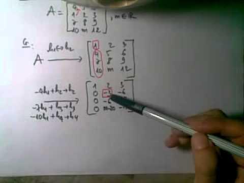 DSTT 7. Đại số tuyến tính: Ma Tran Bac Thang 2.mp4