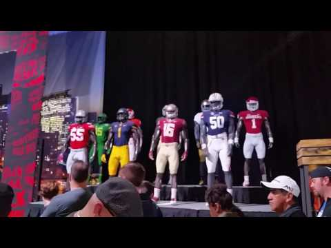 NFL experience 2017