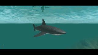 Roblox Gameplay Wilder Ozean