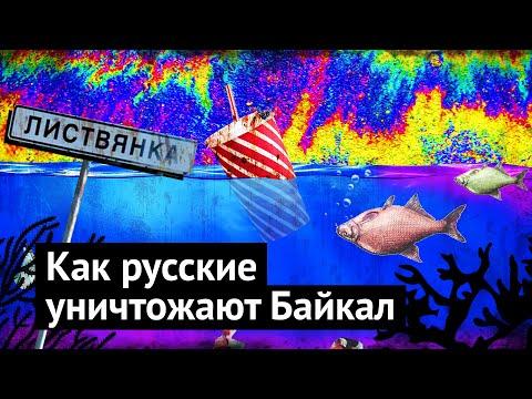 Байкал: живодёрни, мусор, реклама и самострой