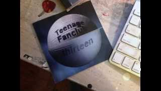 Teenage Fanclub - Weird Horses