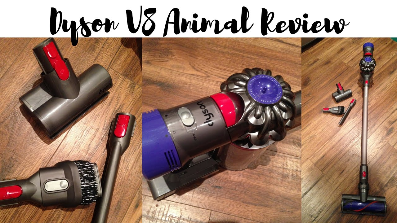 dyson v8 animal cordless vacuum review youtube. Black Bedroom Furniture Sets. Home Design Ideas