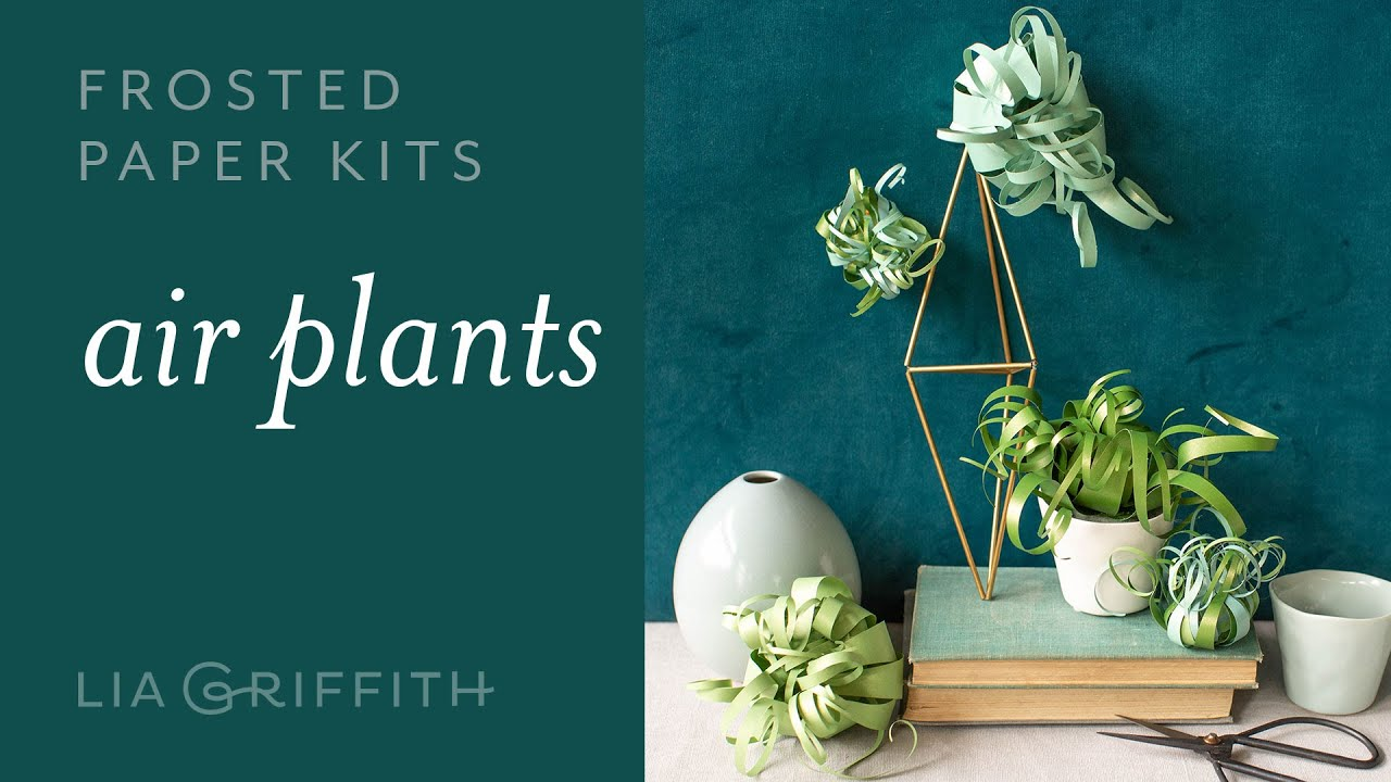 Video Tutorial: NEW Frosted Paper Air Plants Kit