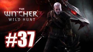 The Witcher 3: Wild Hunt. Прохождение. Часть 37. Враг народа. Око за око.