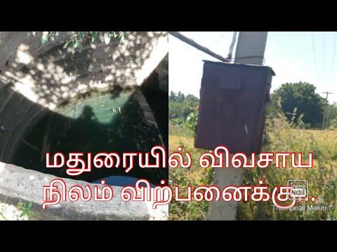மதுரை சோழவந்தான் அருகில் விவசாய நிலம் விற்பனைக்கு | Agriculture land sale near Madurai